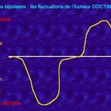 Les principaux traitements contre le trouble bipolaire